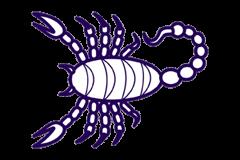 Dilarawurde im Sternzeichen Skorpion geboren