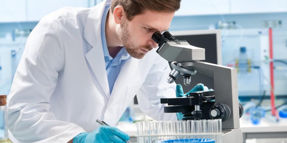 Wissenschaftler am Mikroskop