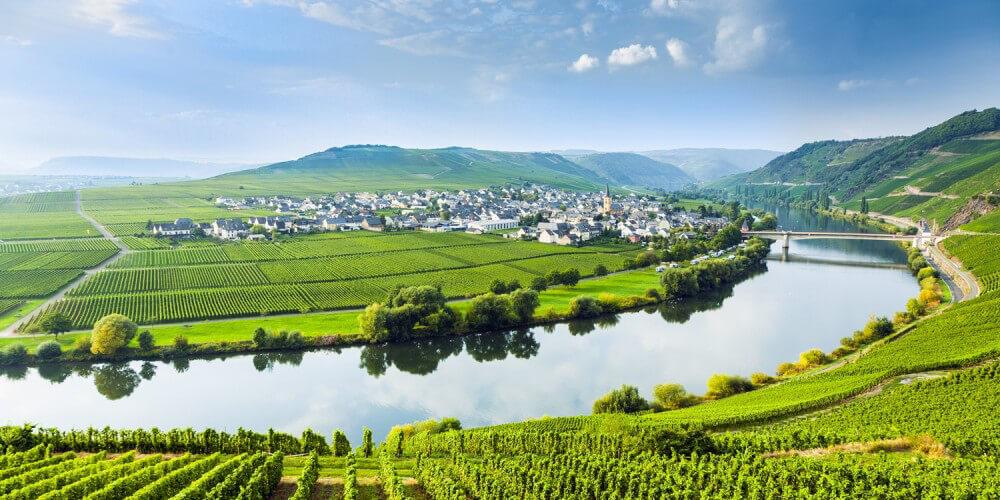 Fluss inmitten von Weinbergen