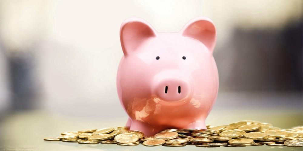 Rosa Sparschwein sitzt im Geld