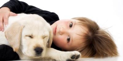 Tierische Freunde geben Halt