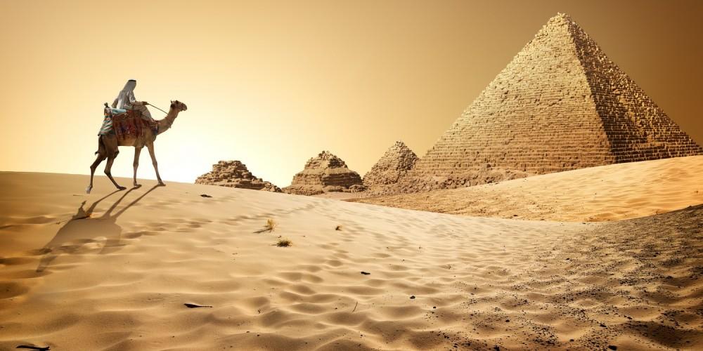 Kamel reitet durch den Sand zu Pyramiden