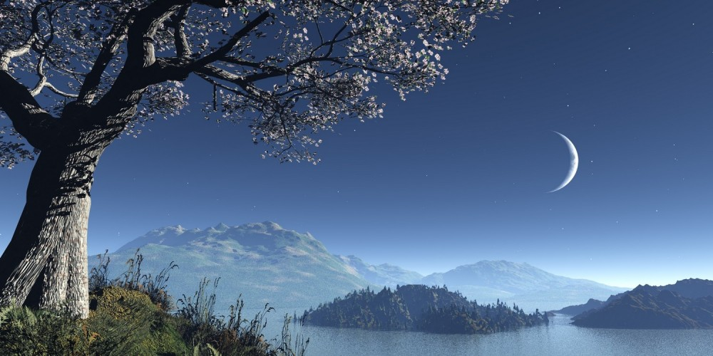 Seenlandschaft im Mondlicht