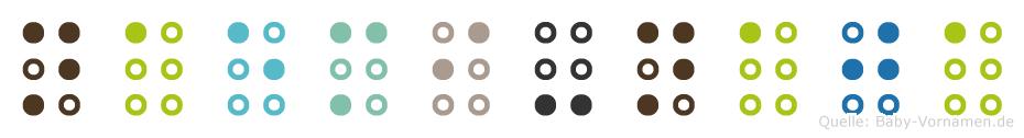 Naemi-Naja in Blindenschrift (Brailleschrift)