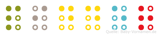 Pidder in Blindenschrift (Brailleschrift)