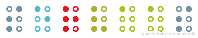 Servaas in Blindenschrift (Brailleschrift)