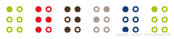 Arnika in Blindenschrift (Brailleschrift)