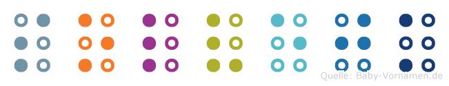 Solvejk in Blindenschrift (Brailleschrift)