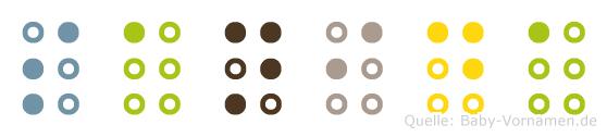 Sanida in Blindenschrift (Brailleschrift)