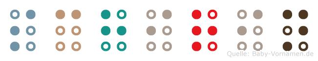 Schirin in Blindenschrift (Brailleschrift)