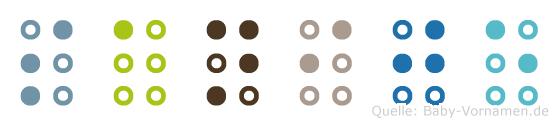Sanije in Blindenschrift (Brailleschrift)