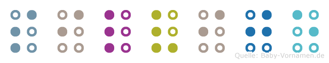 Silvije in Blindenschrift (Brailleschrift)