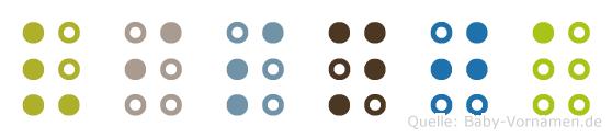 Visnja in Blindenschrift (Brailleschrift)