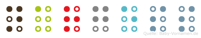 Nargess in Blindenschrift (Brailleschrift)