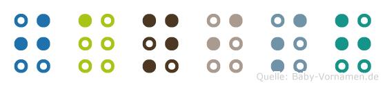 Janish in Blindenschrift (Brailleschrift)
