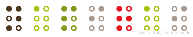 Napirai in Blindenschrift (Brailleschrift)