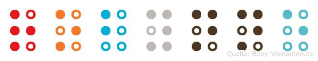 Robynne in Blindenschrift (Brailleschrift)