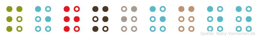 Perniecee in Blindenschrift (Brailleschrift)