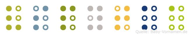 Vspytka in Blindenschrift (Brailleschrift)