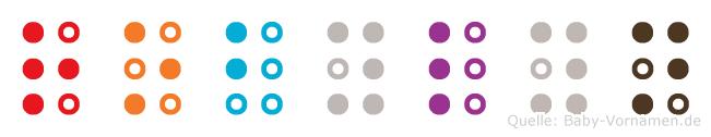 Robylyn in Blindenschrift (Brailleschrift)