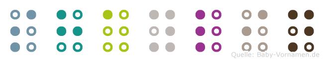 Shaylin in Blindenschrift (Brailleschrift)