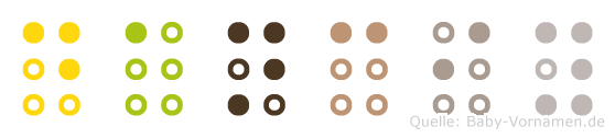 Danciy in Blindenschrift (Brailleschrift)