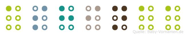 Ashinaa in Blindenschrift (Brailleschrift)