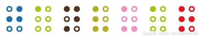 Janvuar in Blindenschrift (Brailleschrift)