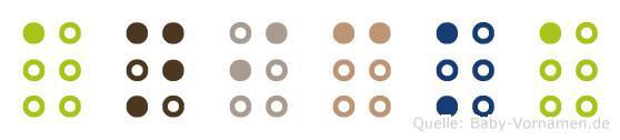 Anicka in Blindenschrift (Brailleschrift)
