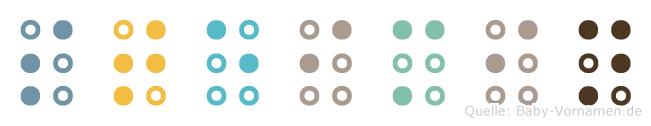 Steimin in Blindenschrift (Brailleschrift)