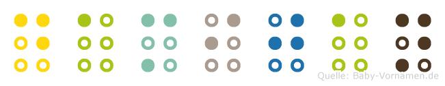 Damijan in Blindenschrift (Brailleschrift)