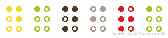Danira in Blindenschrift (Brailleschrift)