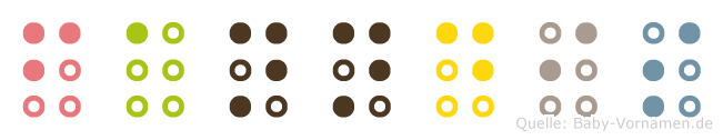 Fanndis in Blindenschrift (Brailleschrift)