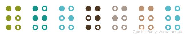 Phenice in Blindenschrift (Brailleschrift)