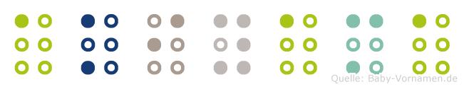 Akiyama in Blindenschrift (Brailleschrift)