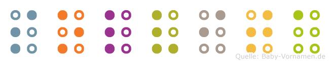 Solvita in Blindenschrift (Brailleschrift)