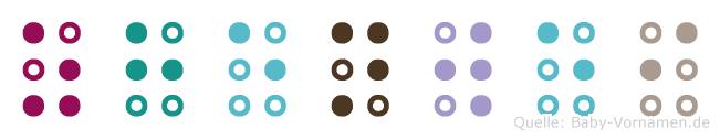 Zhenwei in Blindenschrift (Brailleschrift)