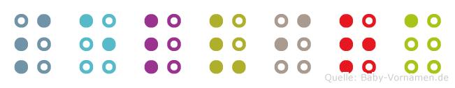 Selvira in Blindenschrift (Brailleschrift)