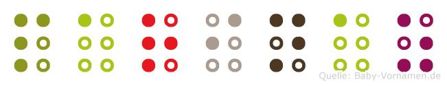 Parinaz in Blindenschrift (Brailleschrift)