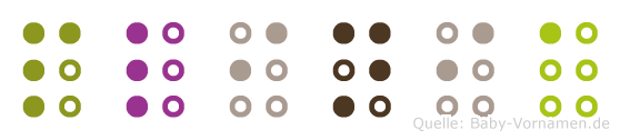 Plinia in Blindenschrift (Brailleschrift)