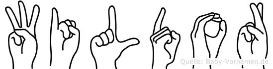 Wildor im Fingeralphabet der Deutschen Gebärdensprache