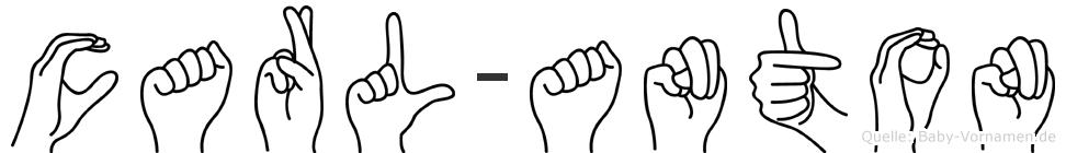 Carl-Anton im Fingeralphabet der Deutschen Gebärdensprache