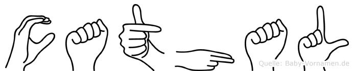 Cathal im Fingeralphabet der Deutschen Gebärdensprache