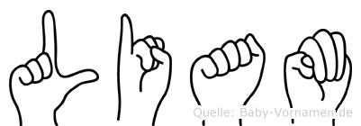 Liam in Fingersprache für Gehörlose