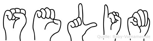Selim im Fingeralphabet der Deutschen Gebärdensprache