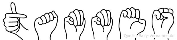 Tammes in Fingersprache für Gehörlose