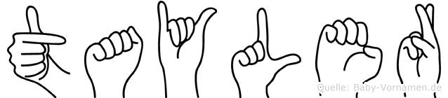 Tayler im Fingeralphabet der Deutschen Gebärdensprache