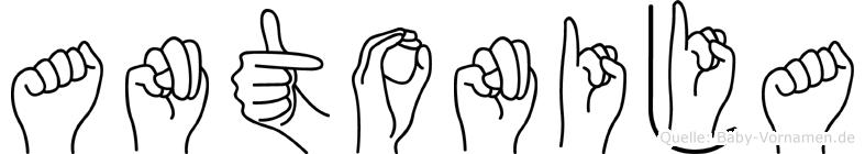 Antonija im Fingeralphabet der Deutschen Gebärdensprache