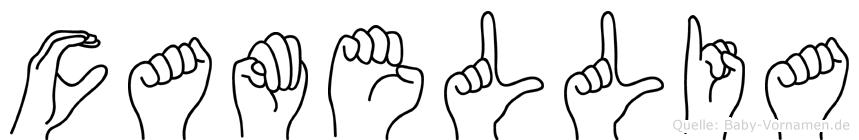 Camellia im Fingeralphabet der Deutschen Gebärdensprache