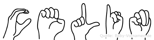 Celin im Fingeralphabet der Deutschen Gebärdensprache